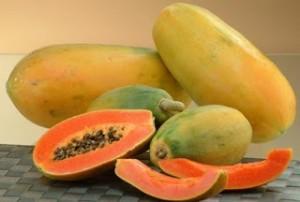 Foto-Papaya
